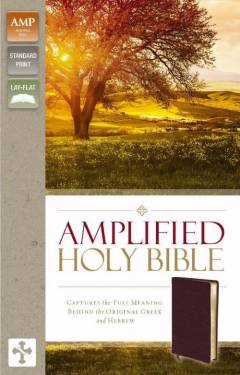 Amplified Bible Burgundy Bonded