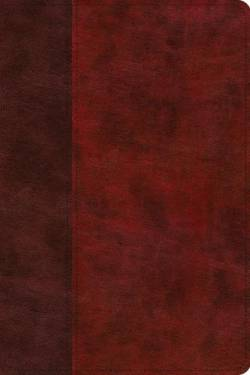 Esv Story Of Redemption Bible Trutone Burgundy/Red Timeless
