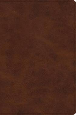 Esv Story Of Redemption Bible Trutone Brown