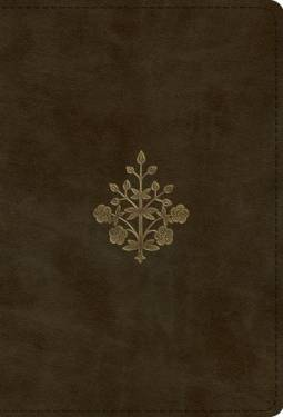 Esv Large Print Compact Bible Olive Branch