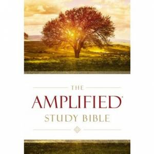 Amplified Study Bible, Hardcover - Large Print