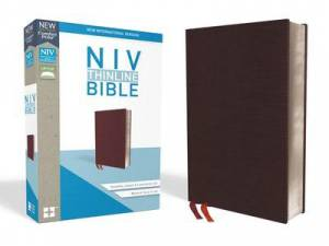 Niv, Thinline Bible, Bonded Leather, Burgundy, Indexed, Red Letter Edition, Comfort Print