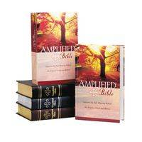 Amplified Bible Burgundy Bonded Leather