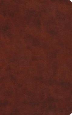 Esv Large Print Value Thinline Bible Trutone Chestnut