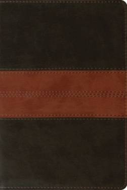 Esv Personal Reference Bible Deep Brown Tan Trail Trutone