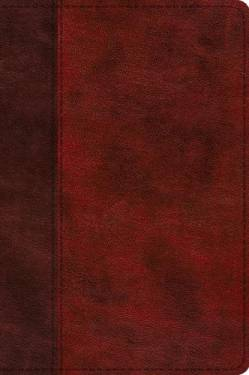 Esv Journaling New Testament, Inductive Edition