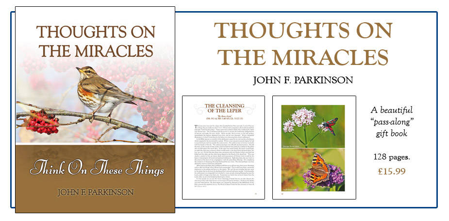 Thoughts on the Miracles